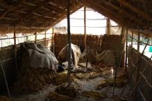F - Tobacco Barn Zimbabwe